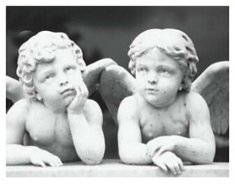 5 magnolia cemetery cherubs