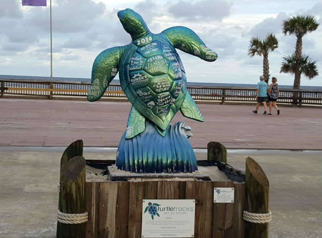 8 turtle gulf shores