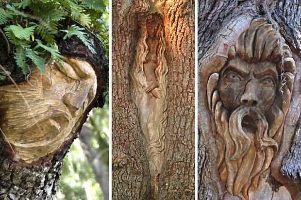 st simons tree_spirits_combo_4