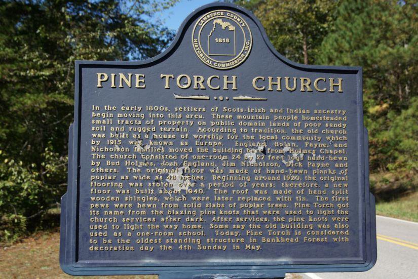 pine torch 7
