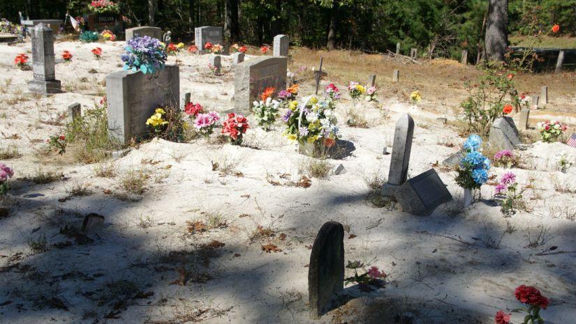 pine torch cemetery 2