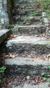 bangor exterior steps